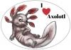 Aufkleber oval I love Axolotl